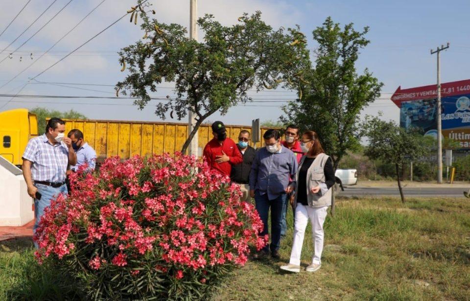 Intenfisifica Cristina Díaz mantenimiento a plazas y camellones