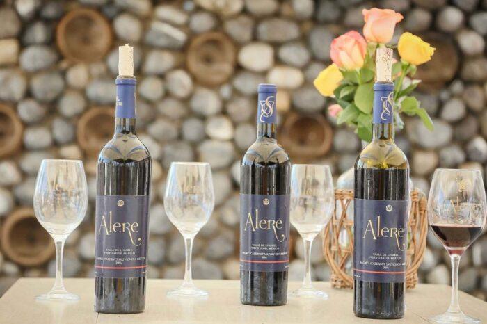 UANL. Los secretos del vinoAlere