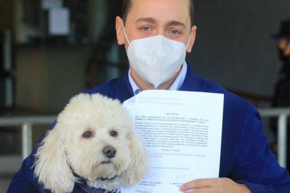 Propone Eduardo Leal Centro de Resguardo Animal