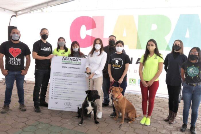 FIRMA CLARA LUZ COMPROMISO CON ASOCIACIONES PARA PRIORIZAR AGENDA ANIMALISTA